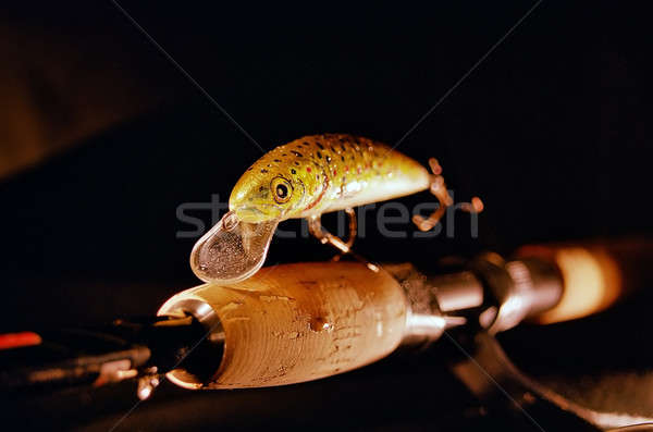 Lures Stock photo © Ariusz