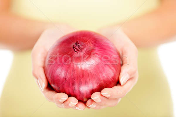 Onions Stock photo © Ariwasabi