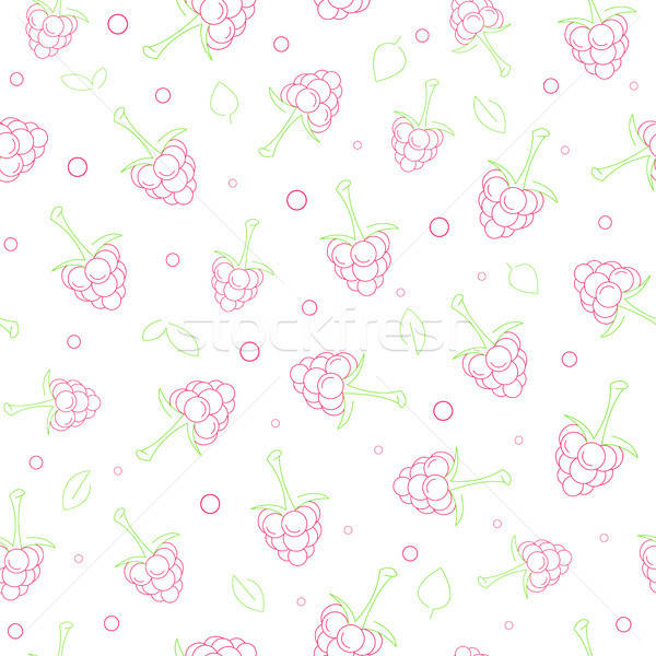 Seamless pattern with berries. The pattern with raspberries in a linear style. Vector illustration. Stock photo © Arkadivna