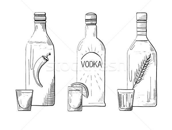 Schets drie verschillend flessen wodka peper Stockfoto © Arkadivna