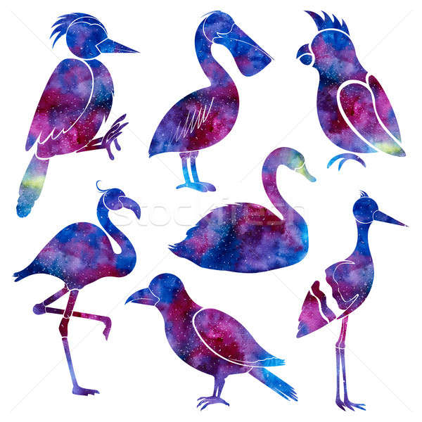 Silhouettes of different birds. Space background. Hand drawn watercolor illustration. Stock photo © Arkadivna