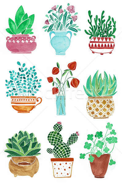 Set of different plants in pots. Flowers in a vase. Watercolor hand drawn illustration. Stock photo © Arkadivna