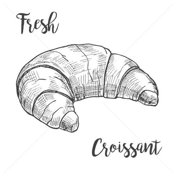 Fraîches croissant isolé blanche croquis style Photo stock © Arkadivna