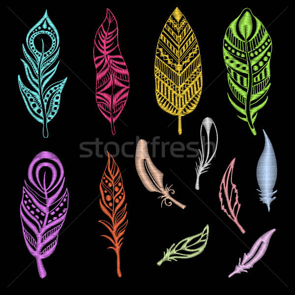 Set of embroidered feathers on a black background. Vector illustration of a sketch style. Stock photo © Arkadivna