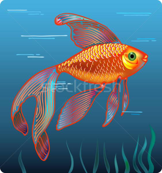 Stok fotoğraf: Altın · balık · doğa · arka · plan · hayvanlar · siluet