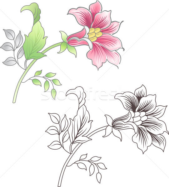 Pink and outlined flower  Stock photo © arlatis