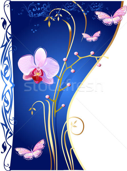 Orkide kelebekler mavi doğa yaprak arka plan Stok fotoğraf © arlatis