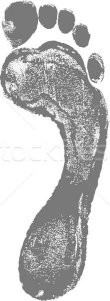 Gris carbono pie impresión aislado blanco Foto stock © arlatis
