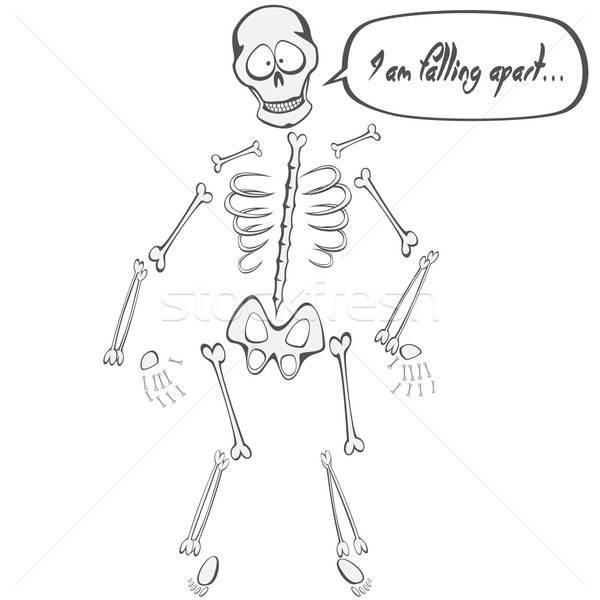 Csontváz haver vicces kabala zuhan külön Stock fotó © arleevector