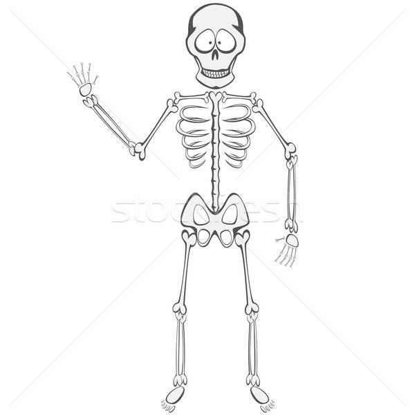 Skeleton Buddy  Stock photo © arleevector