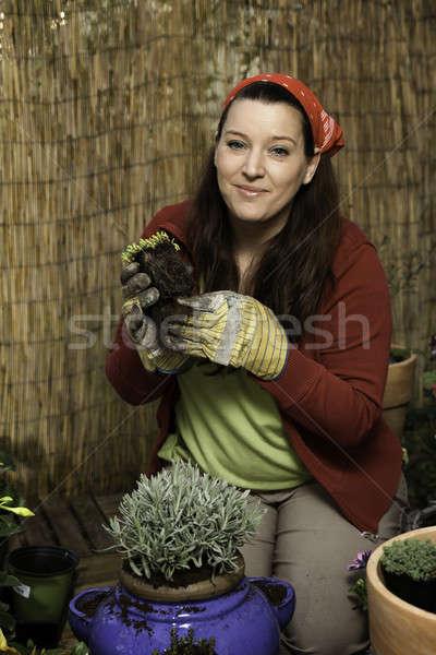 女性 ガーデニング 赤 竹 フェンス ストックフォト © armin_burkhardt