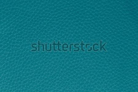 ターコイズ 革 マクロ 画像 テクスチャ ストックフォト © armin_burkhardt