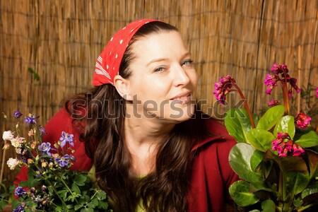 女性 桜 香り 赤 ガーデニング ストックフォト © armin_burkhardt