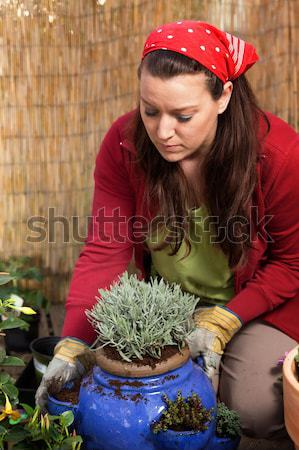 Woman gardening - whiping off her sweat Stock photo © armin_burkhardt