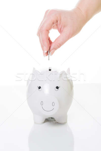 money box Stock photo © armin_burkhardt