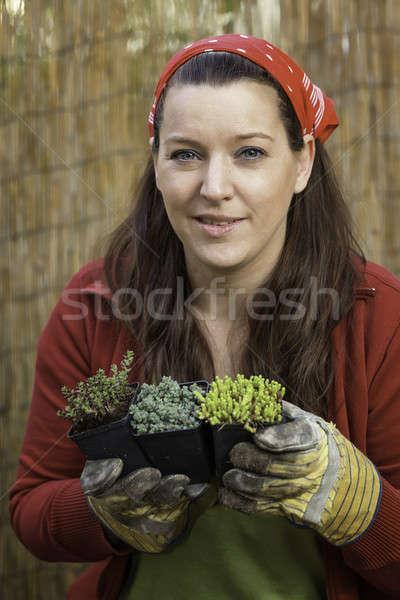 Kadın bahçıvanlık kaya bahçe kırmızı Stok fotoğraf © armin_burkhardt