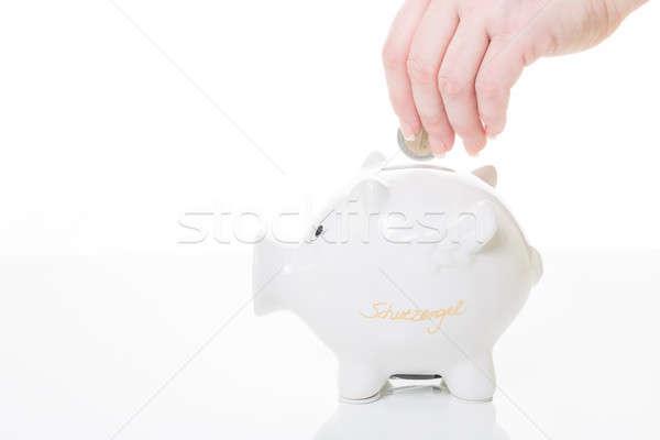 Choroba korzyść kobiet strony monety banku piggy Zdjęcia stock © armin_burkhardt