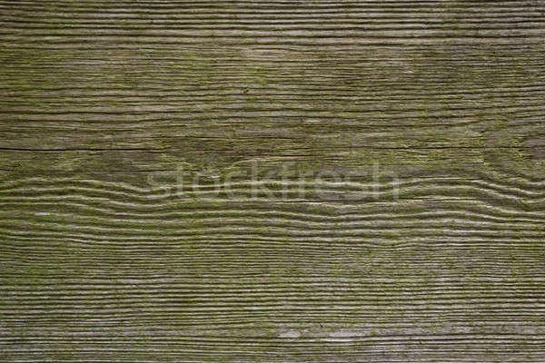Intemperie legno struttura verde texture Foto d'archivio © armin_burkhardt