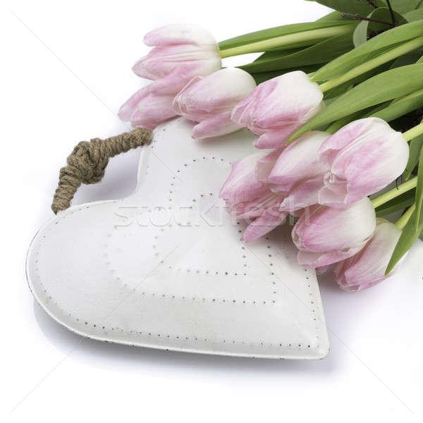 Bianco cuore tulipani rosa fiore Foto d'archivio © armin_burkhardt