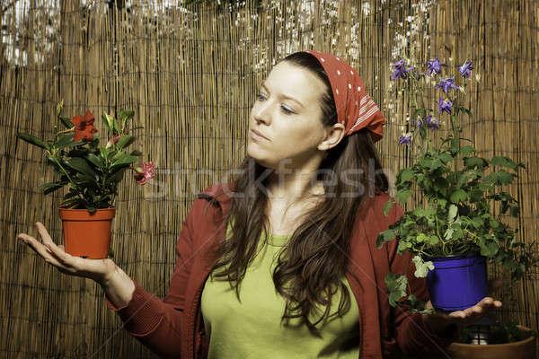 女性 ガーデニング 決定 2 花 ストックフォト © armin_burkhardt