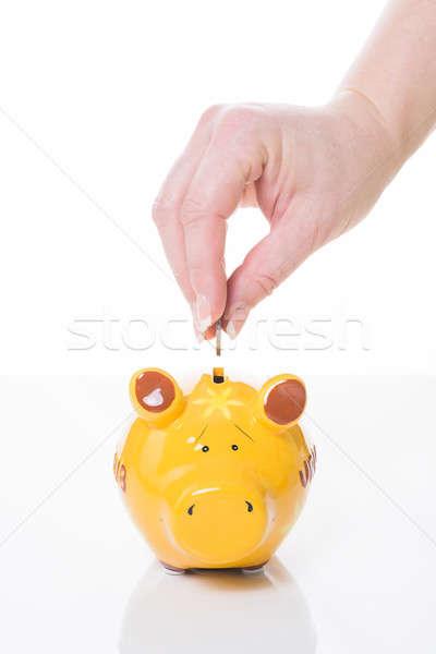 黄色 貯金 女性 手 コイン ビジネス ストックフォト © armin_burkhardt
