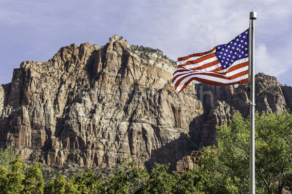 USA flag in front of mountains Stock photo © armin_burkhardt