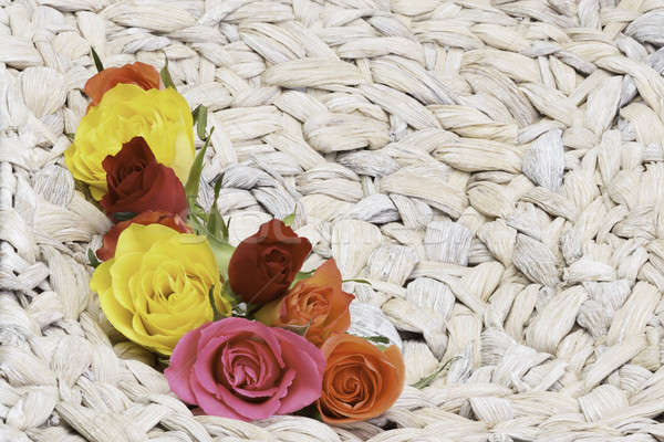 Güller sepet su çiçek bahar doğa Stok fotoğraf © armin_burkhardt