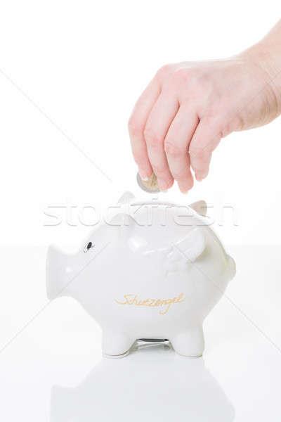 供給 女性 手 コイン 貯金 ストックフォト © armin_burkhardt