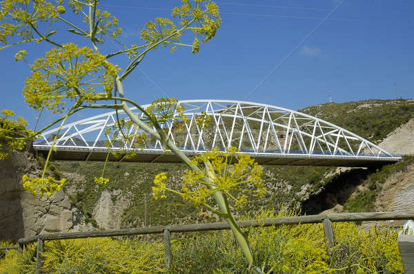 Pont modernes bois métal Photo stock © arocas