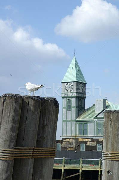 Manhattan iskele New York Amerika Birleşik Devletleri Amerika Stok fotoğraf © arocas