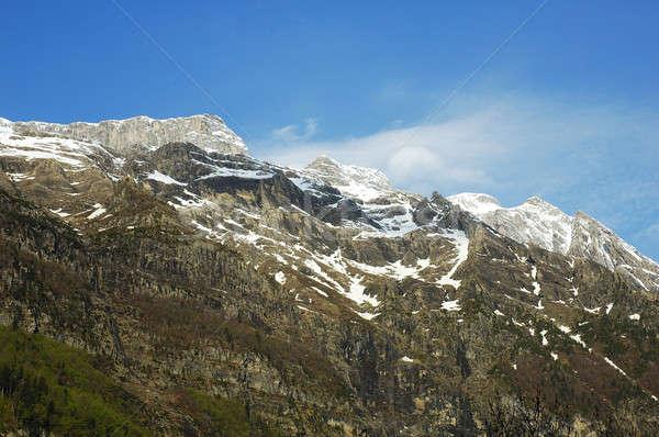 Montagnes nord Espagne herbe neige montagne Photo stock © arocas