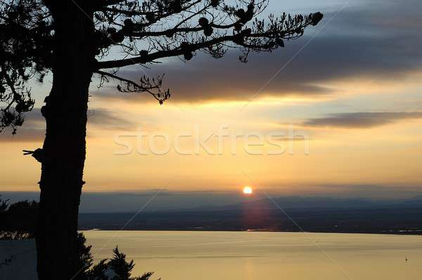 Roses coucher du soleil ciel mer Photo stock © arocas