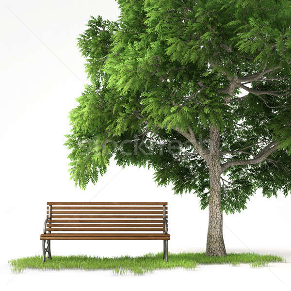 isolated bench under tree Stock photo © arquiplay77