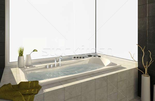 bathtub with views Stock photo © arquiplay77
