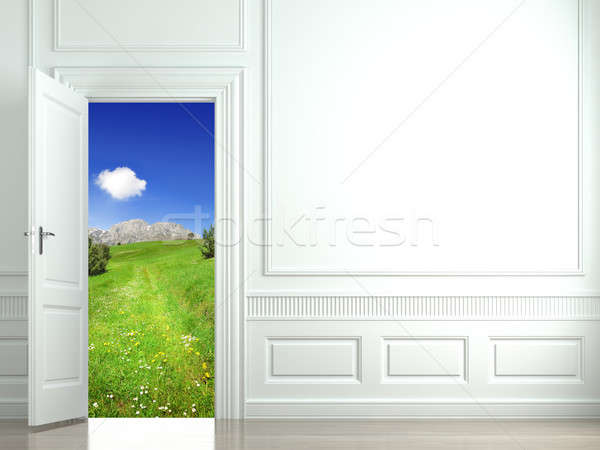 Blanche mur porte ouverte paysage image Photo stock © arquiplay77