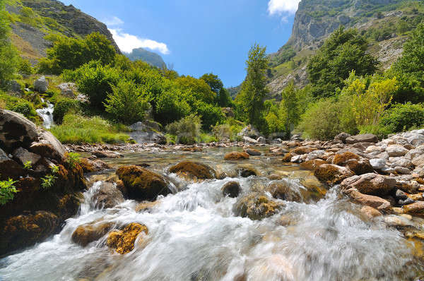 landscape with a mountain river Stock photo © arquiplay77