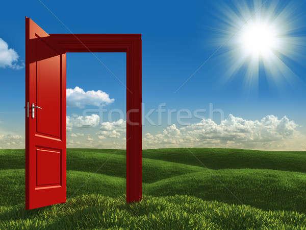 open white door to the meadows Stock photo © arquiplay77