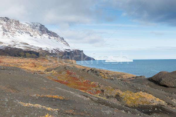 ártico paisagem ilha montanha vegetação água Foto stock © Arrxxx