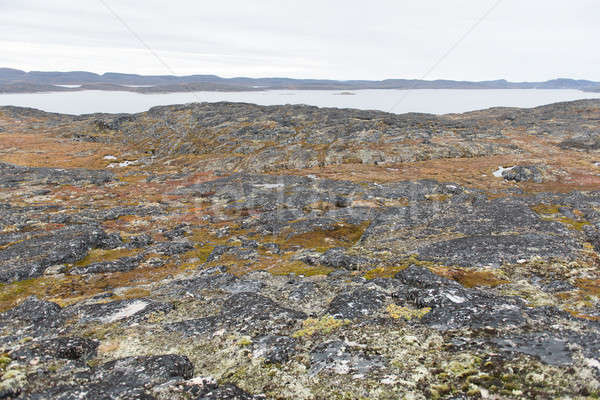 Stock fotó: Sarkköri · tájkép · körül · felület · tenger · nyár