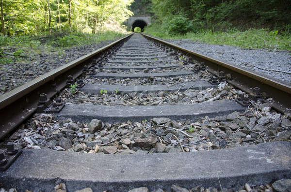 Old railway track Stock photo © Arrxxx