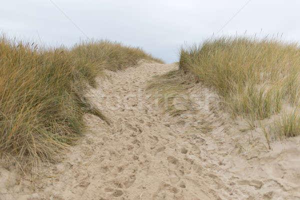 Pad strand gelukkig Blauw ontspannen wind Stockfoto © Arrxxx