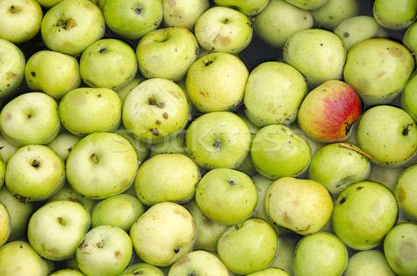 Appels water bad groene organisch voedsel Stockfoto © Arrxxx