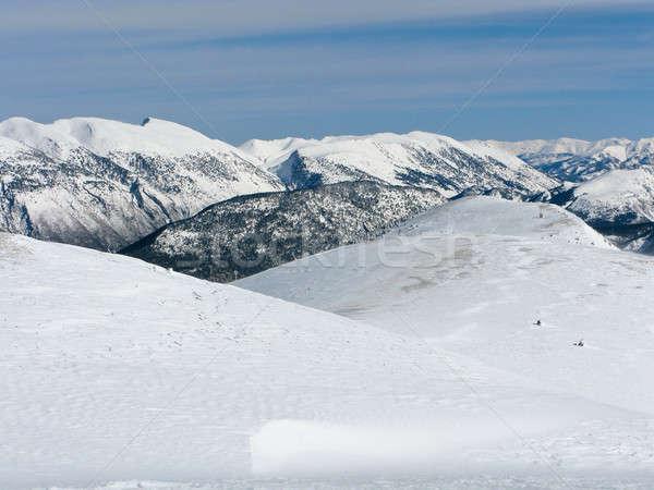 Nieve montana montanas España árbol Foto stock © Arrxxx