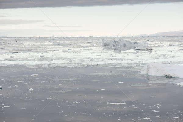 Арктика морской пейзаж вокруг воды облака морем Сток-фото © Arrxxx
