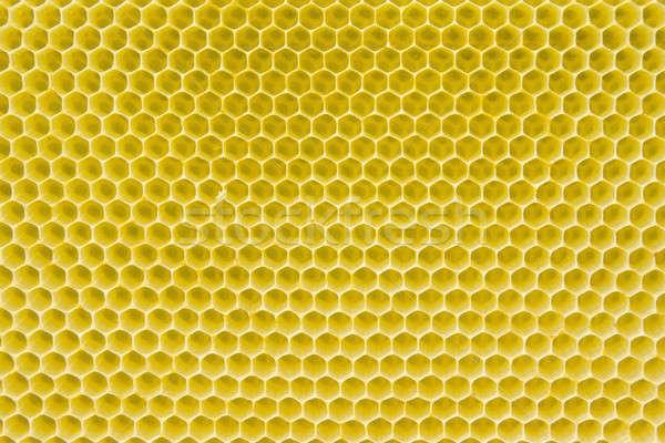 A nido d'ape pattern giallo vuota natura sfondo Foto d'archivio © Arrxxx