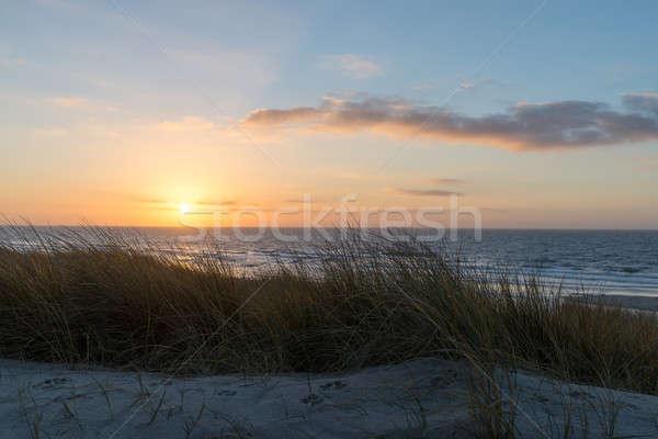 Gün batımı plaj okyanus kum doğa deniz Stok fotoğraf © Arrxxx