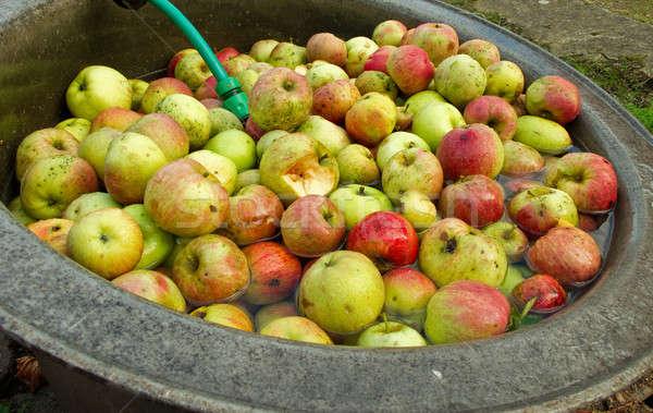 Maçãs orgânico lavar suco comida Foto stock © Arrxxx