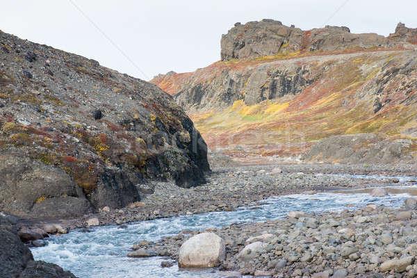 Арктика реке лет осень красочный растительность Сток-фото © Arrxxx