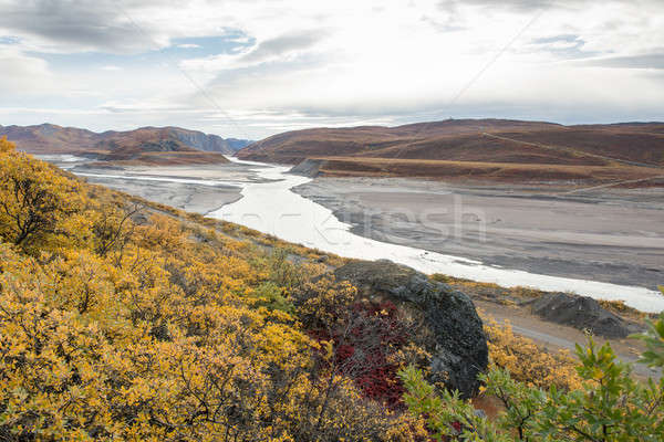 Beautiful autumn landscape Stock photo © Arrxxx