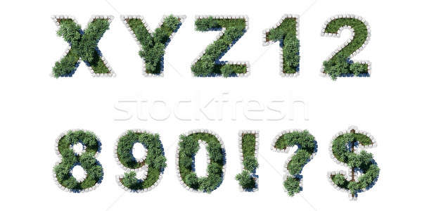 Green park type set with grey cubing border Stock photo © Arsgera